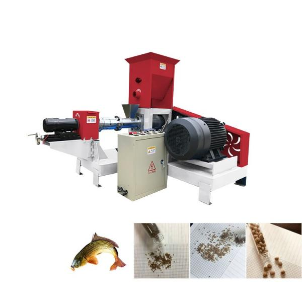 100kg/H-6ton/H Floating and Sinking Fish Feed Extruder Plant Equipment Production Line Machine