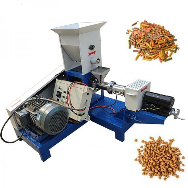China Direct Factory Sale Price Seawater Marine Grade Ice Making Machine for Coast Line Fish/Food Industry